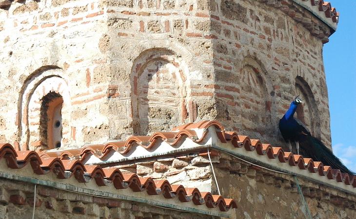 http://www.machikado-creative.jp/wordpress/wp-content/uploads/2015/04/Mkedonija-2009-Ohrid_4117.jpg