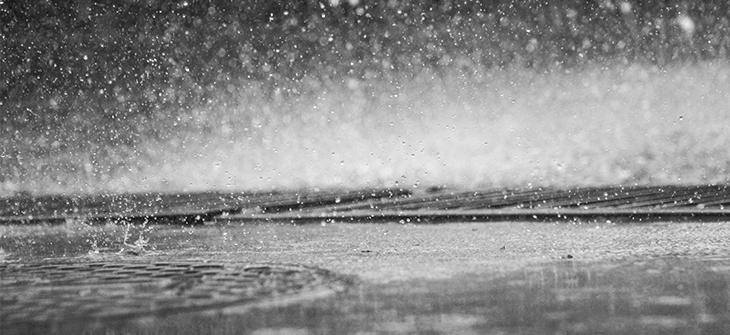 rainsong_eye