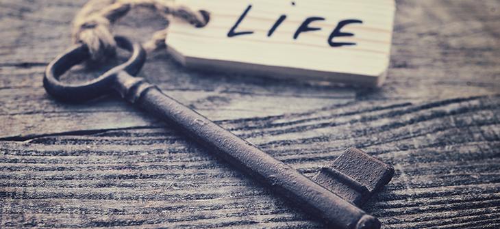life_eye
