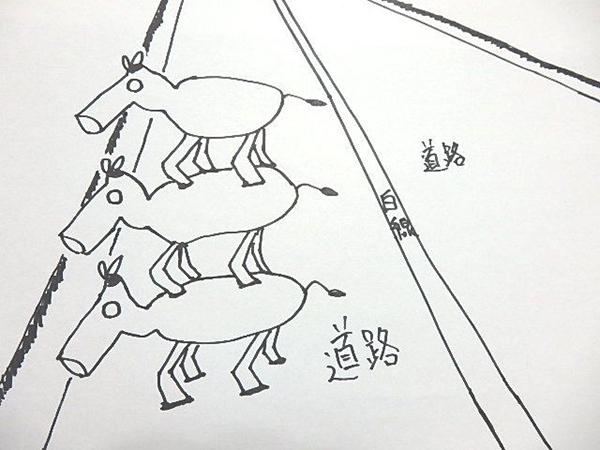 https://www.machikado-creative.jp/wordpress/wp-content/uploads/2016/11/074.jpg